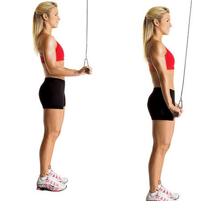Triceps pushdown image